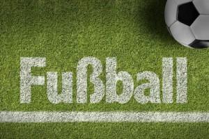 fussball-rasen