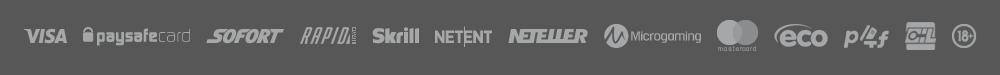 ReloadBet Zahlungsmethoden